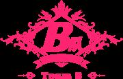 BEJ48 Team B