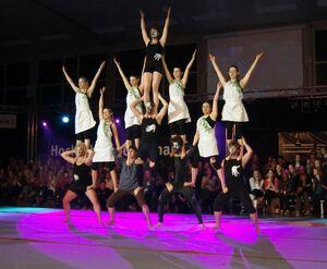 HSP-Show2013-MS.jpg
