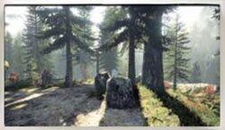 Elderwood National Park