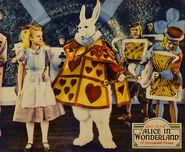 Charolette as Alice