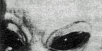 Rigelans (Rigel greys)