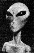 Grey Alien2
