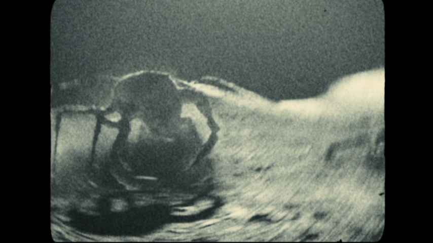 lunar truth apollo 18 - photo #22