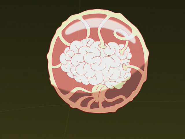 File:Brain Ball.jpg