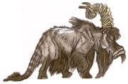 Dwarf bantha