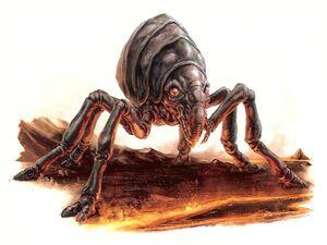 Mustafar Lava Flea