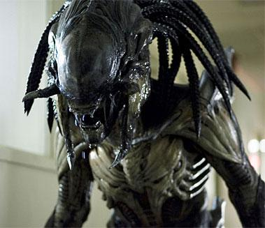 1000  images about Predalien on Pinterest | Toys, Aliens and Alien ...