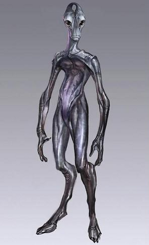 File:Salarian Concept.png