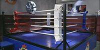 Boxclub