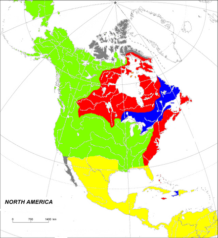 File:North America before GW1 (Toyotomi).png