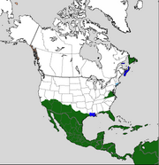 North American Colonization TE circa 1620