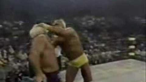 Hulk hogan vs ric flair wcw title pt 1