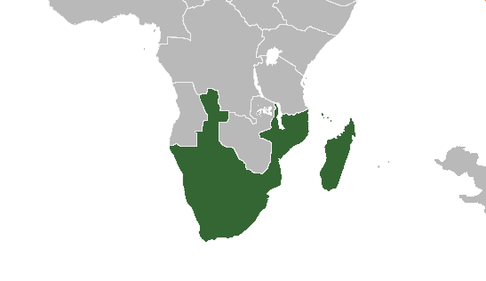 File:United States of South Africa 1997 (Alternity).png