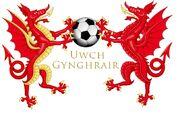Welsh Premiership Logo