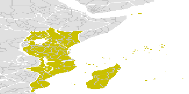 File:BetterYellowMadagascar.png