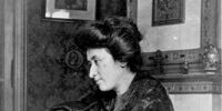 Rosa Luxemburg (Nazi Cold War)