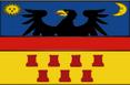 Transylvania Flag 83DD lg