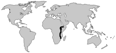 Blank world map9