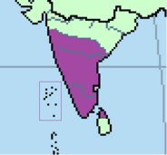Pandyas Empire