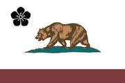 Flag of Kasodani (PM II)
