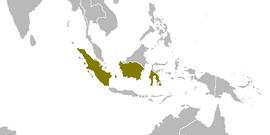 Indonesia 1997 (Alternity)
