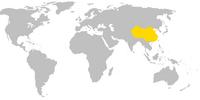 China (Byzantine Glory)