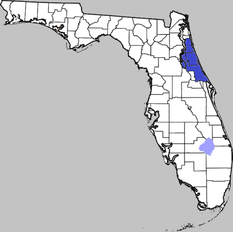 File:Florida 2.png