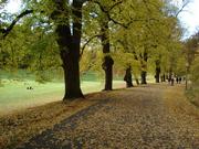Talvi Park