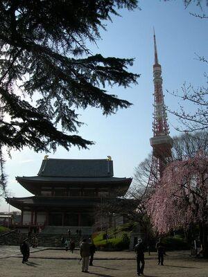 JPN Shiba Koen 01 (VegWorld)