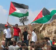 Palestinian flag web