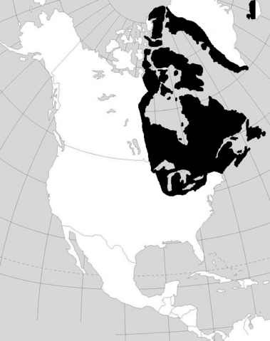 File:Norsecolonies.PNG