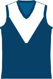 263px-Darwin Buffaloes Away Jumper
