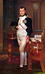 Napoleon portrait