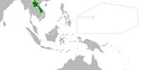 Laos (Cherry, Plum, and Chrysanthemum)