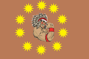 NativeAmericaFlag