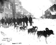 Klondike gold rush-sled team
