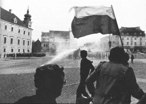 PolishRiot