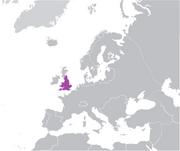 England Single NW