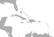CNA bahamas