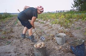 File:Russia farm-1-.jpg