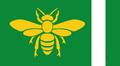 Flag of Lincoln (The Kalmar Union)
