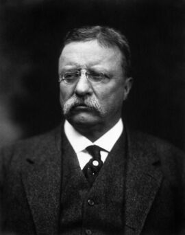 T Roosevelt