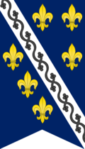 Bosnian Kingdom - flag