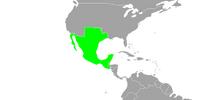Mexico (The Kaiser's New Clothes)
