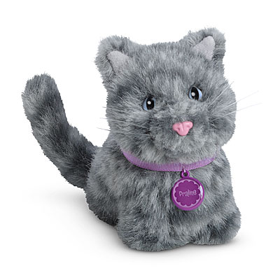 File:Praline cat.jpg