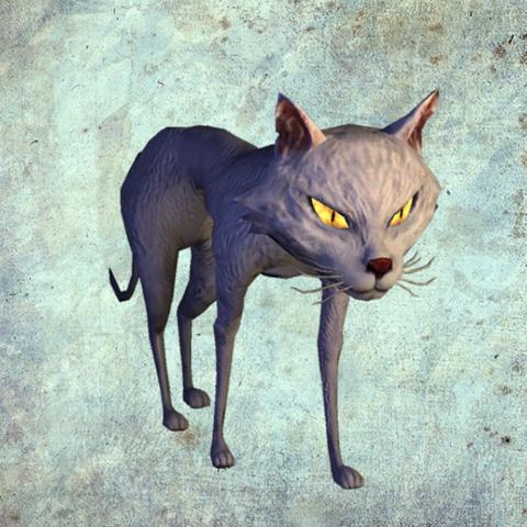 File:Cat render.png