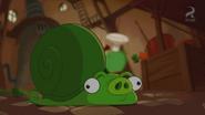 Pig Plot Potion Snail Pig