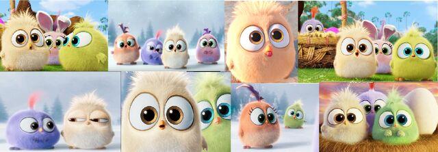 File:Angry-birds-800.jpg