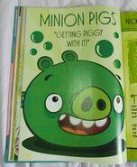 Annual Book Pig 1