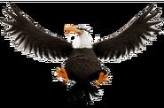 ABMovie Mighty Eagle Flying